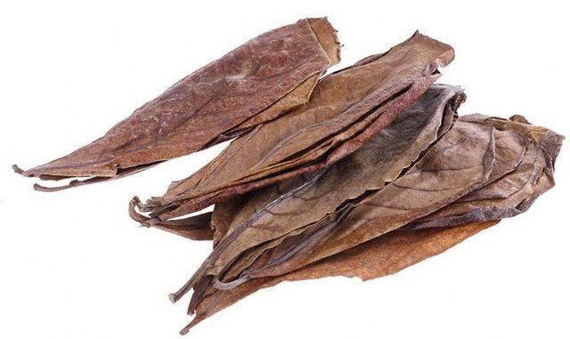 Bio Listy Natural Terminalia Catappa, indických mandlí pro akvarijní vodu k vyvážení PH